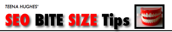 seo bit size tips logo 550x100 10 SEO Tips on a Postcard