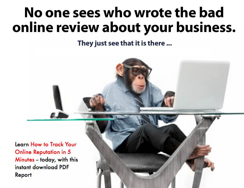 How to track your online reputation (image of monkey at desk)